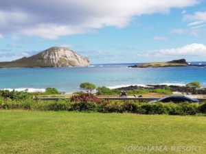 シーライフパーク 景色 海の景色 ハワイ オアフ島
