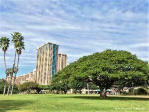 Waikiki Park