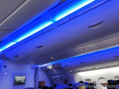 ANA A380 プレミアムエコノミー 天井