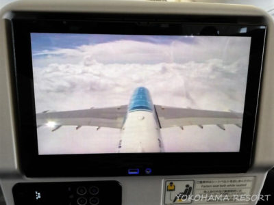 ANA A380 エコノミー モニター