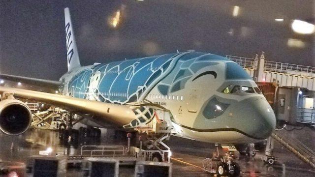 ANA A380 フライングホヌ2号機