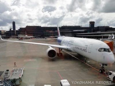 チャイナエアライン 成田空港 機体 A350