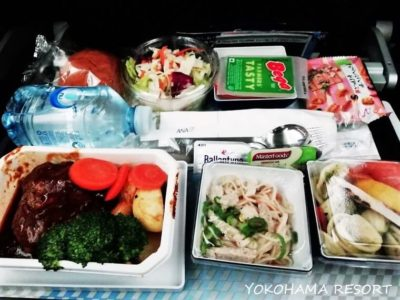 ANA NH880シドニー羽田 機内食 煮込みハンバーグ