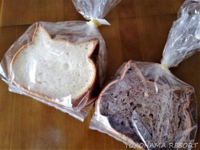 大阪土産 猫パン